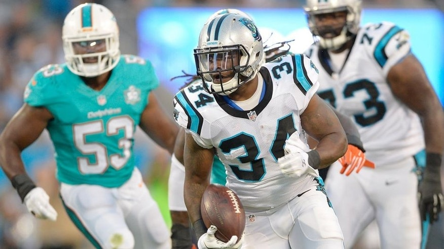 CHARLOTTE, NC - AUGUST 22: Cameron Artis-Payne #34 of the Carolina Panthers runs against the Miami Dolphins during their preseason NFL game at Bank of America Stadium on August 22, 2015 in Charlotte, North Carolina. (Photo by Grant Halverson/Getty Images)