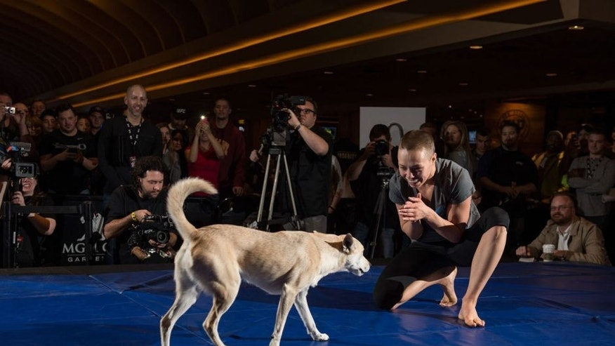 LAS VEGAS, NEVADA - DECEMBER 08: Rose Namajunas brings her dog on stage during an open training session for fans and media at the MGM Grand Hotel/Casino on December 8, 2015 in Las Vegas Nevada. (Photo by Brandon Magnus/Zuffa LLC/Zuffa LLC via Getty Images)