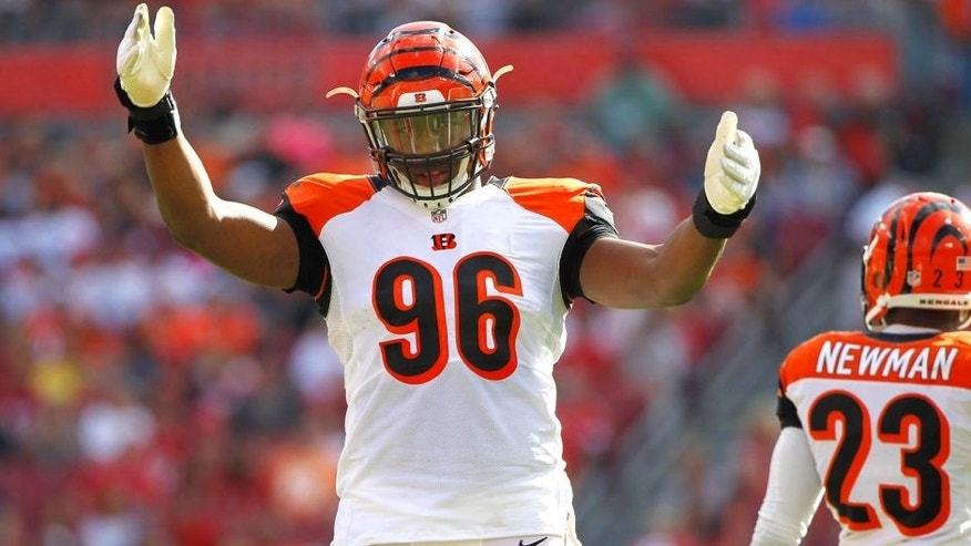 Nov 30, 2014; Tampa, FL, USA; Cincinnati Bengals defensive end Carlos Dunlap (96) gets pumped up against the Tampa Bay Buccaneers during the second quarter at Raymond James Stadium. Mandatory Credit: Kim Klement-USA TODAY Sports