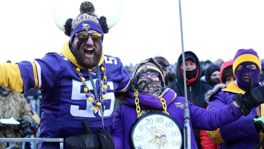 Jan 10, 2016; Minneapolis, MN, USA; Fans of the Minnesota Vikings wear a thermometer in the first half of a NFC Wild Card playoff football game against the Seattle Seahawks at TCF Bank Stadium. Mandatory Credit: Brad Rempel-USA TODAY Sports