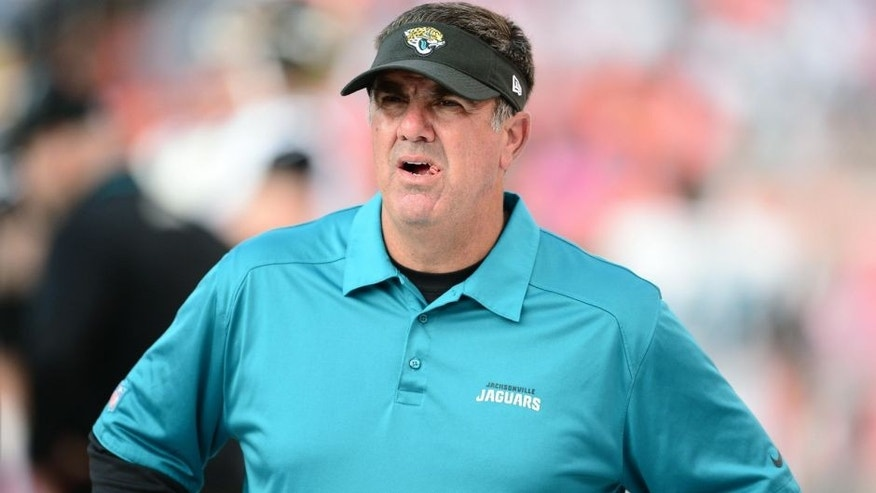 Oct 13, 2013; Denver, CO, USA; Jacksonville Jaguars defensive coordinator Bob Babich during the game against the Denver Broncos at Sports Authority Field at Mile High. The Broncos defeated the Jaguars 35-19. Mandatory Credit: Ron Chenoy-USA TODAY Sports
