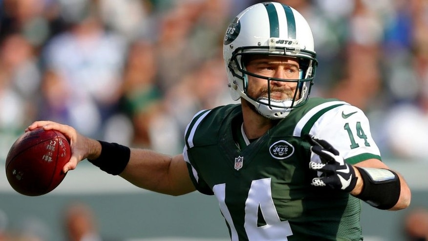 Dec 13, 2015; East Rutherford, NJ, USA; New York Jets quarterback Ryan Fitzpatrick (14) drops back to pass against the Tennessee Titans during the first quarter at MetLife Stadium. Mandatory Credit: Brad Penner-USA TODAY Sports