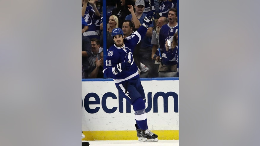 Tampa Bay Lightning center Brian Boyle (11) celebrates his goal against the Detroit Red Wings during the third period of an NHL hockey game Thursday, Oct. 13, 2016, in Tampa, Fla. (AP Photo/Chris O'Meara)