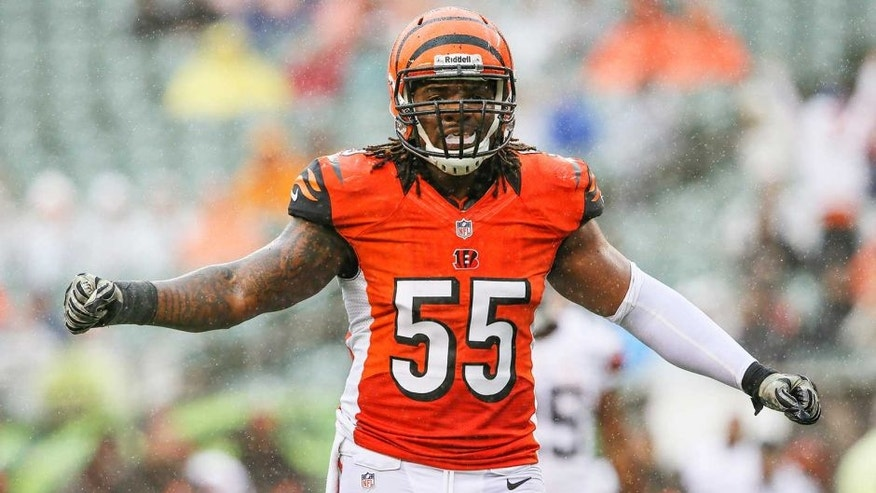 Nov 17, 2013; Cincinnati, OH, USA; Cincinnati Bengals outside linebacker Vontaze Burfict (55) reacts during the game against the Cleveland Browns at Paul Brown Stadium. Cincinnati won 41-20. Mandatory Credit: Kevin Jairaj-USA TODAY Sports