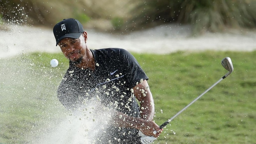 Tiger Woods hits from a bunker onto the 14th green during the first round at the Hero World Challenge golf tournament, Thursday, Dec. 1, 2016, in Nassau, Bahamas. Woods is one-over-par for the round. (AP Photo/Lynne Sladky)