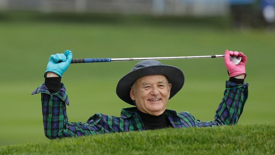 Bill Murray prepares to hit out of a bunker onto the third green during the celebrity challenge event of the AT&T Pebble Beach National Pro-Am golf tournament Wednesday, Feb. 8, 2017, in Pebble Beach, Calif. (AP Photo/Eric Risberg)