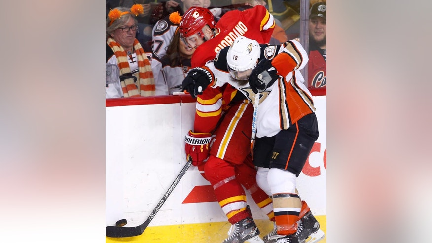 Anaheim Ducks' Patrick Eaves, right, battles for the puck with Calgary Flames' Mark Giordano during the second period of an NHL hockey game Sunday, April 2, 2017, in Calgary, Alberta. (Larry MacDougal/The Canadian Press via AP)
