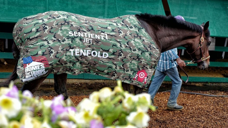 Tenfold a three-year-old thoroughbred is looking to beat Justify at the Belmont Stakes Saturday running in support of Homes For Our Troops a nonprofit that builds homes for severely injured post-9/11 veterans