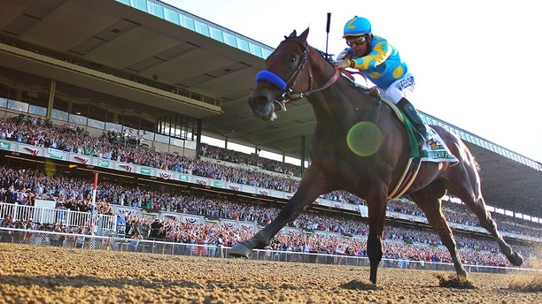 Jun 6, 2015; Elmont, NY, USA; Victor Espinoza aboard American Pharoah (5) goes on to win the 2015 Belmont Stakes and the Triple Crown at Belmont Park. Mandatory Credit: Anthony Gruppuso-USA TODAY Sports - 8599630
