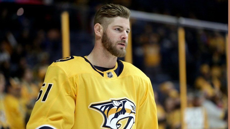 Nashville Predators star Austin Watson was arrested by police in Tennessee on Saturday on a charge of domestic assault.