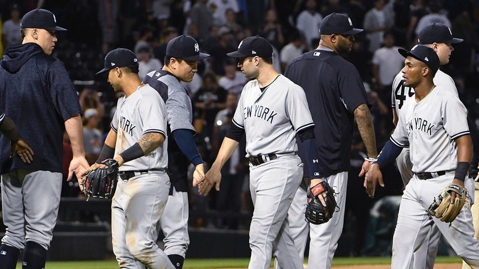 The Yankees celebrate a victory after an umpire pulled a bug from his ear.