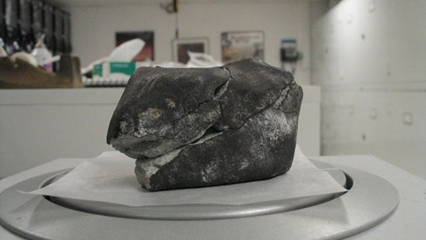 A small meteorite that fell from the sky into a doctor's office in Virgina on Jan. 18, 2010.
