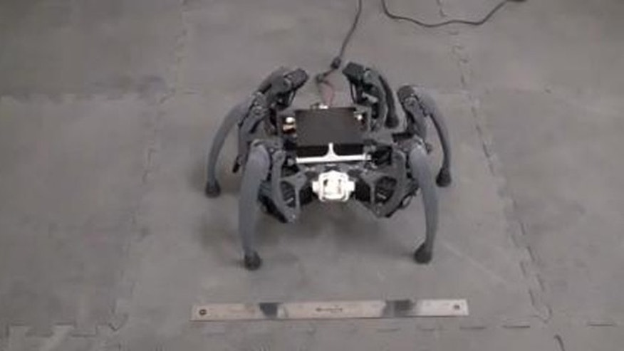 "A screen capture of UA electrical engineering student Matt Bunting's ""Hexapod,"" a spider-like robot he has built."