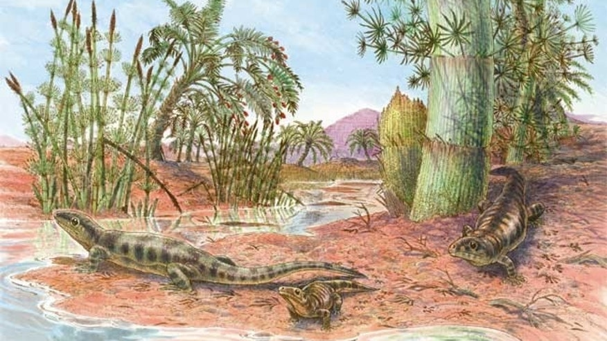 Fossil tracks suggest an ancient reptile was about the size of a gecko and lived in an Outback-like environment some 318 million years ago.