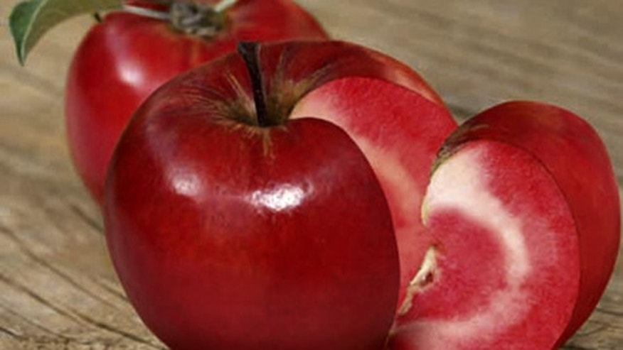 The world's first red-fleshed apple, the Redlove, has rosy-red flesh with a beautiful pattern running through it, thanks to genetic modification.