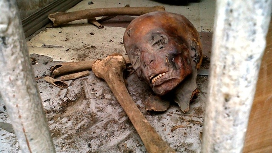Parts of unidentified mummies are seen damaged on the floor of the Egyptian Museum in Cairo early Saturday, Jan. 29, 2011.