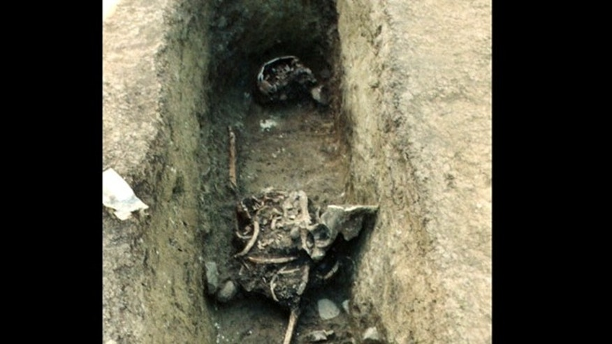 When this grave in the Austrian medieval cemetery Brunn am Gebirge was excavated, the jumbled bones of the corpse revealed that someone else had beat the excavators to it and had opened it up to rummage around inside.