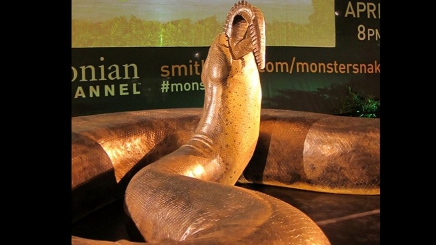 Titanoboa lived 60 million years ago, in the first rainforests. This recreation was put up in Grand Central's Vanderbilt Hall.
