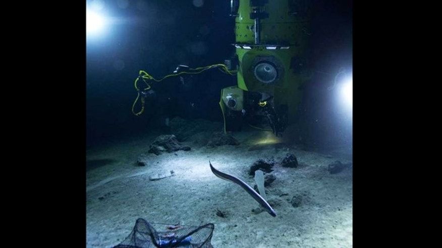 The Deepsea Challenger hits bottom.