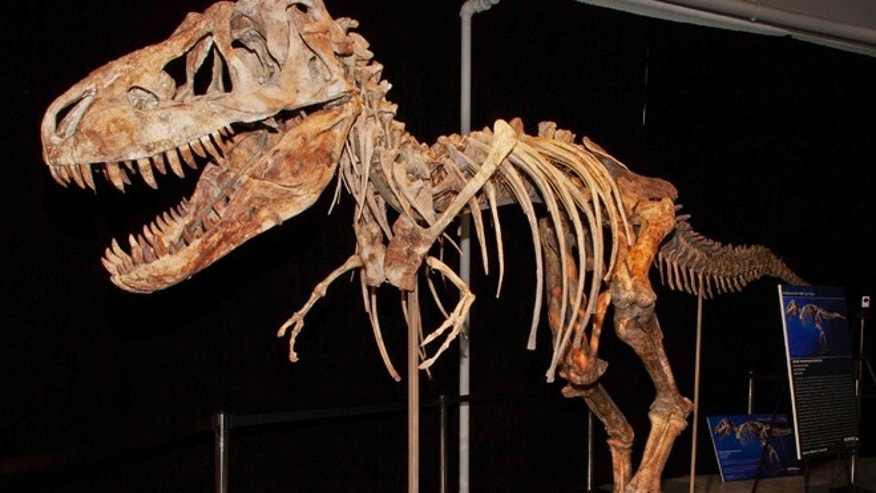 A file photo from documents released from the U.S. Attorney's office shows the fossil of a Tyrannosaurus bataar dinosaur at the center of a lawsuit demanding its return to Mongolia.