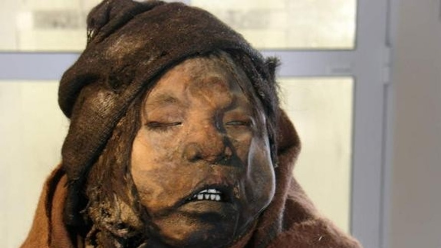 The three Llullaillaco mummies, including that of the 7-year-old boy (shown here), are preserved at Museum of High Mountain Archaeology (MAAM) in Salta, Argentina.