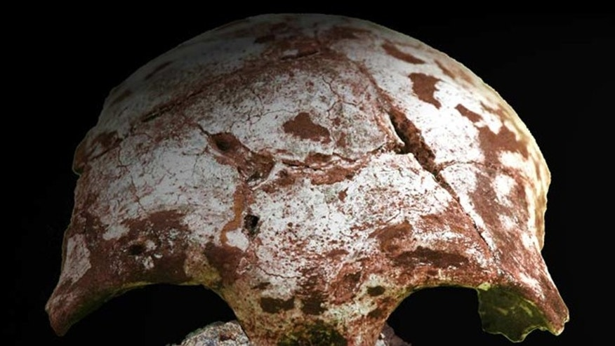 A reconstruction of the human skull discovered in Tam Pa Ling.