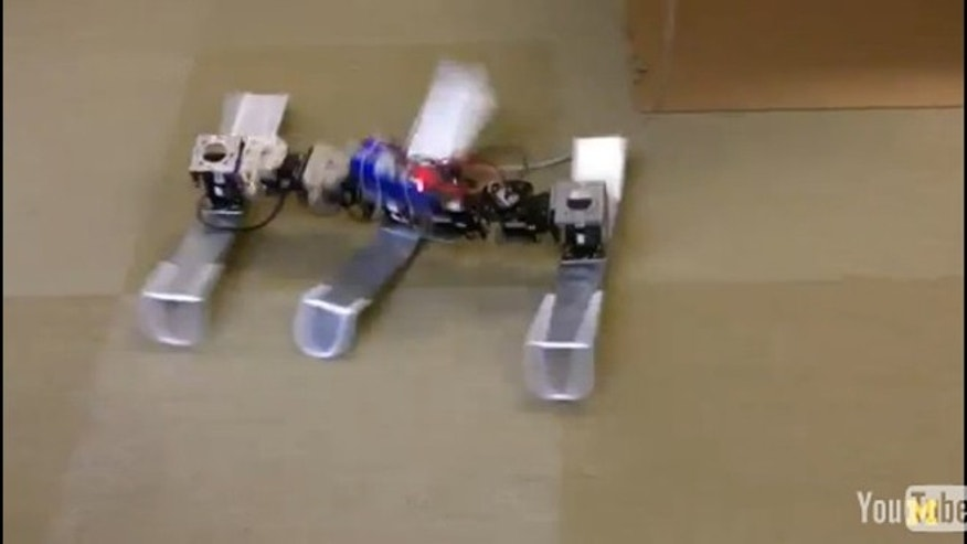 A cockroach-inspired robot scuttles stably across the floor.