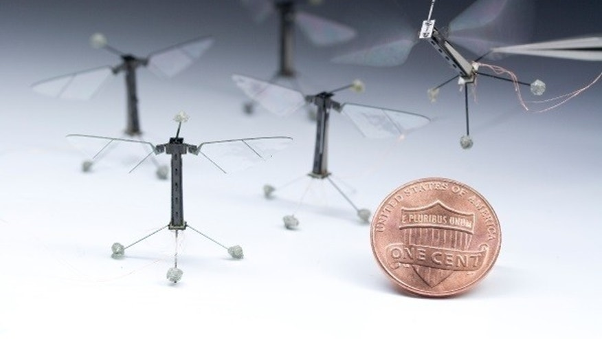 The RoboBee is the smallest flight-capable robot to date.