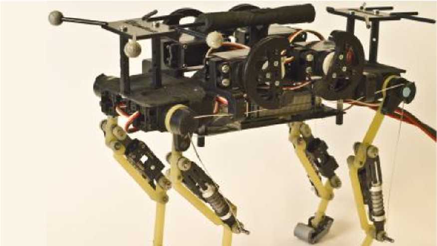 This is Cheetah-cub, a robust quadruped robot.