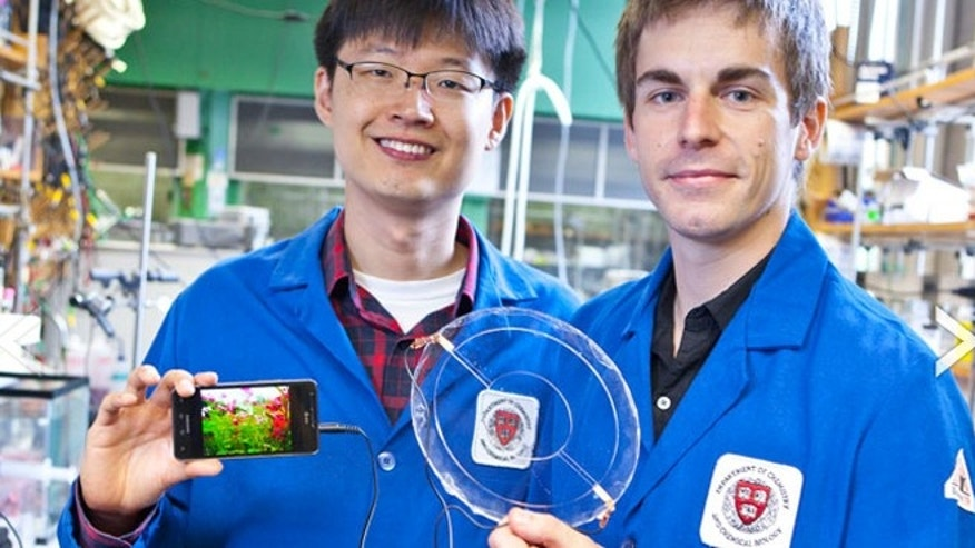 Jeong-Yun Sun (left) and Christoph Keplinger (right) demonstrate their transparent ionic speaker.