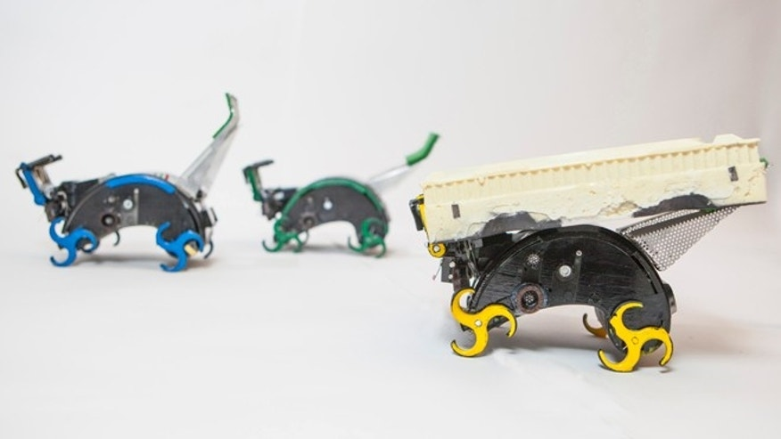 Bio-inspired climbing robots using specialized bricks show how user-requested structures can be collectively built. A human asks for a particular final structure; robots with limited sensing, each acting independently, take actions that together lead to the desired result.