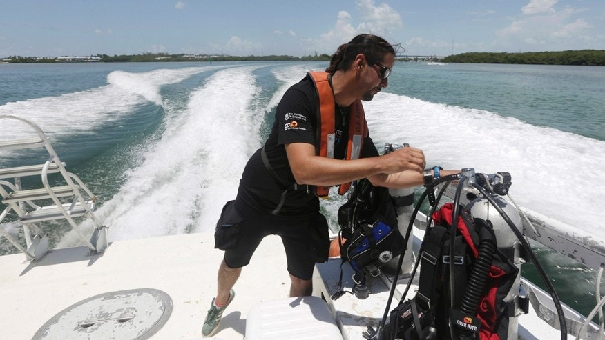 In this Monday, Aug. 11, 2014 photo, Manuel Gonzales, of Catlin Seaview Survey, checks his diving gear as he heads out for a survey of the corals off the coast of Islamorada, Fla. U.S.