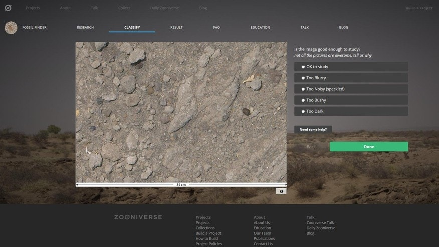 Fossil Finder screenshot from https://www.zooniverse.org/projects/adrianevans/fossil-finder/