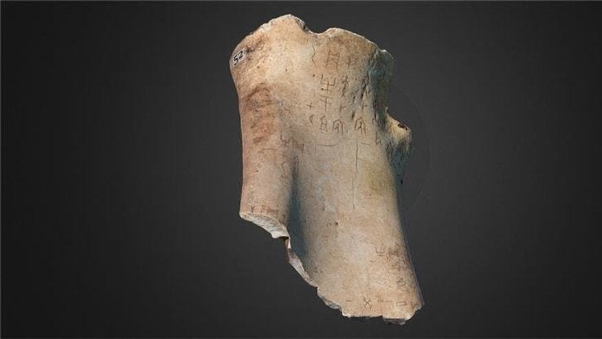 Oracle bone. (University of Cambridge)