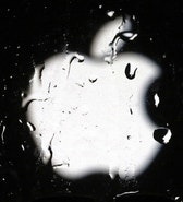 A logo of Apple is seen in this September 23, 2014 illustration photo in Sarajevo.  REUTERS/Dado Ruvic (BOSNIA AND HERZEGOVINA  - Tags: BUSINESS TELECOMS)   - RTR47HVY