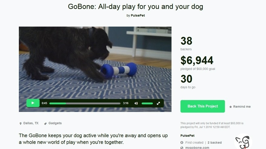 (Screen grab of GoBone's Kickstarter page)