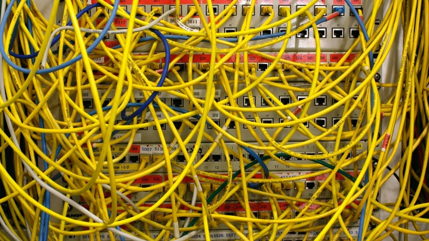 File photo: Ethernet cables used for internet connections are pictured in a Berlin office, August 20, 2014. (REUTERS/Fabrizio Bensch)