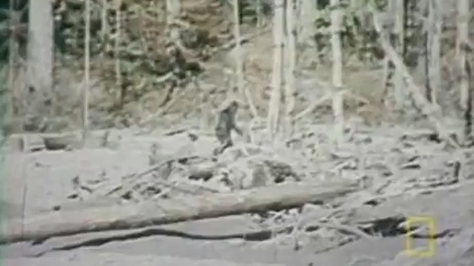 File photo: A still image of the infamous 1967 Roger Patterson film which appeared to show Bigfoot on film. (Credit: YouTube)