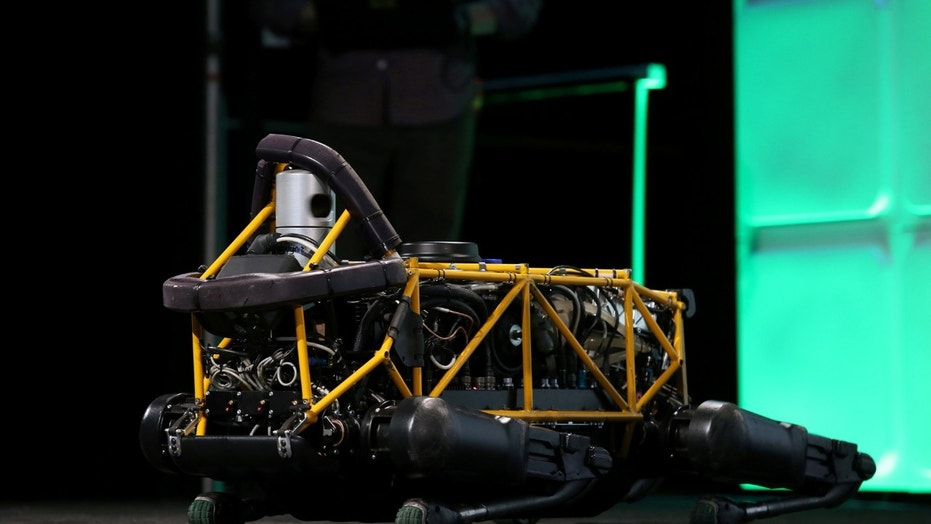 File photo: Boston Dynamics' Spot robot lies down on the stage during 2016 TechCrunch Disrupt in San Francisco, California, U.S. September 14, 2016. (REUTERS/Beck Diefenbach)