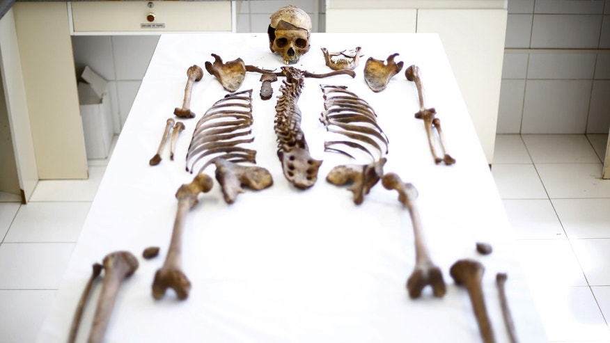 File photo: A skeleton of a victim executed during the rule of dictator Augusto Pinochet lies at the laboratory of Forensic Identification Unit in the Legal Medical Service at Santiago city, Chile, October 26, 2015. (REUTERS/Ivan Alvarado)