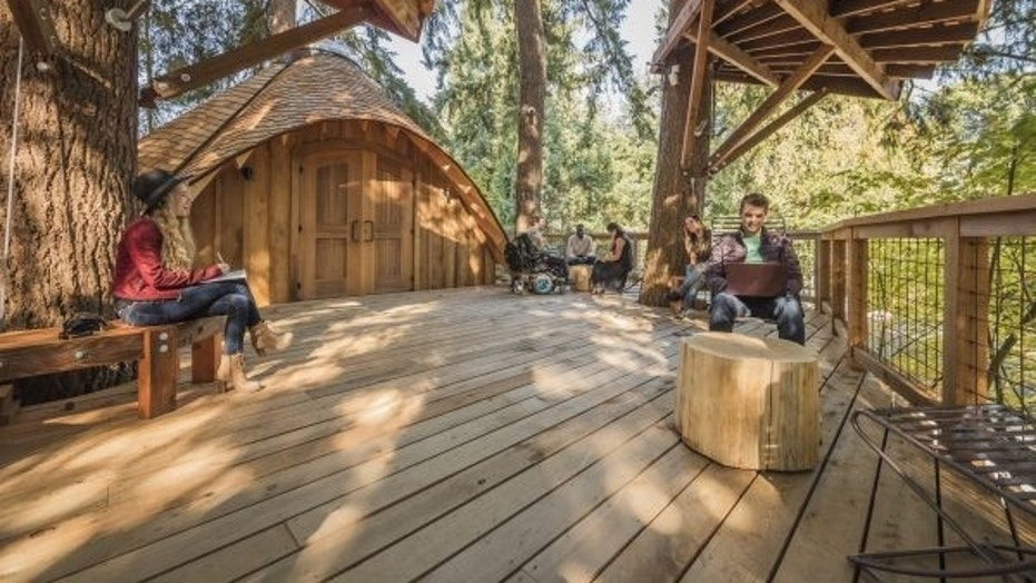 Microsoftu0027s treehouse outdoor meeting spaces (Microsoft) & Microsoft built a trio of treehouse for its employees on its ...