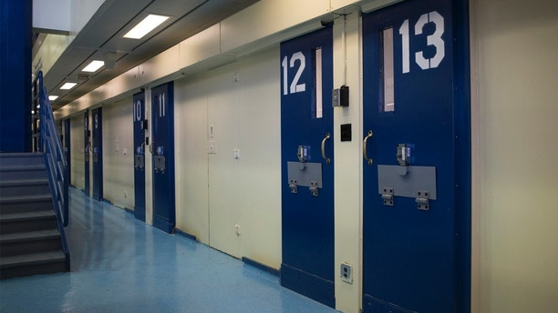 Jail cells are seen in the Enhanced Supervision Housing Unit at the Rikers Island Correctional facility in New York March 12, 2015. New York City is proposing to reduce violence among inmates at its troubled Rikers Island jail by limiting visitors, adding security cameras and separating rival gangs, Mayor Bill de Blasio announced on Thursday. REUTERS/Brendan McDermid (UNITED STATES - Tags: CRIME LAW CIVIL UNREST) - GM1EB3D0HHQ01