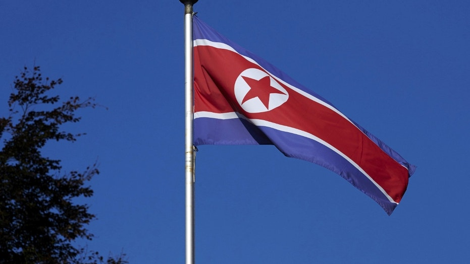 File photo - A North Korean flag flies on a mast at the Permanent Mission of North Korea in Geneva Oct. 2, 2014. (REUTERS/Denis Balibouse/File Photo)