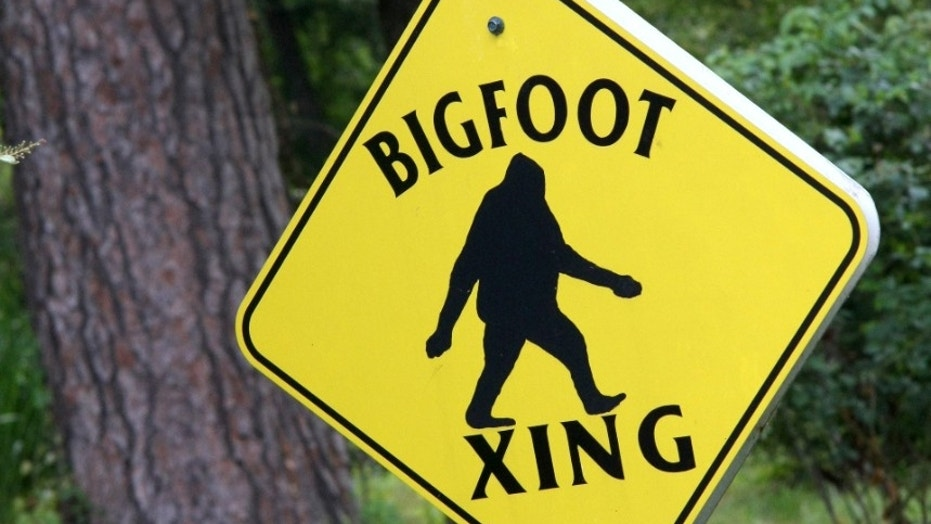 1518539768188 - VIDEO: Is it ... Bigfoot? Hard-to-make-out footage purporting to show legendary giant in Canada forest goes viral