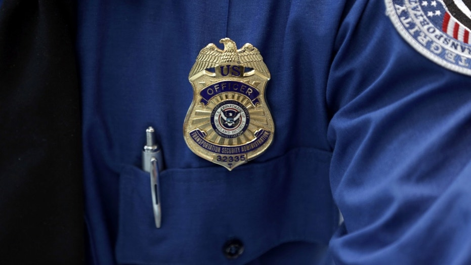 A Transportation Security Administration (TSA) official's wears a TSA badge at Terminal 4 of JFK airport in New York City, U.S., May 17, 2017. REUTERS/Joe Penney - RC1ADE93C100