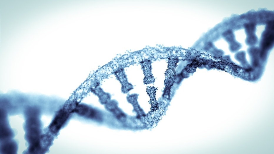blue double helix models on background (Credit: iStock)