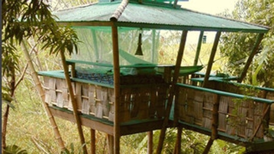 A tree house in Rincon, Puerto Rico listed on Airbnb.com.