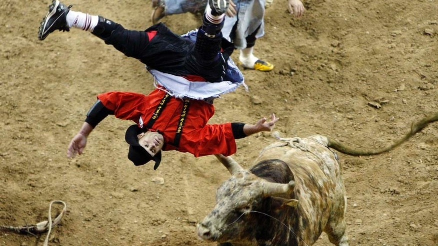 Bull fighter Darrell Diefenbach is flipped by bull Big Iron during the third go-round of National Finals Rodeo Saturday, Dec. 4, 2010, in Las Vegas. (AP Photo/Isaac Brekken)
