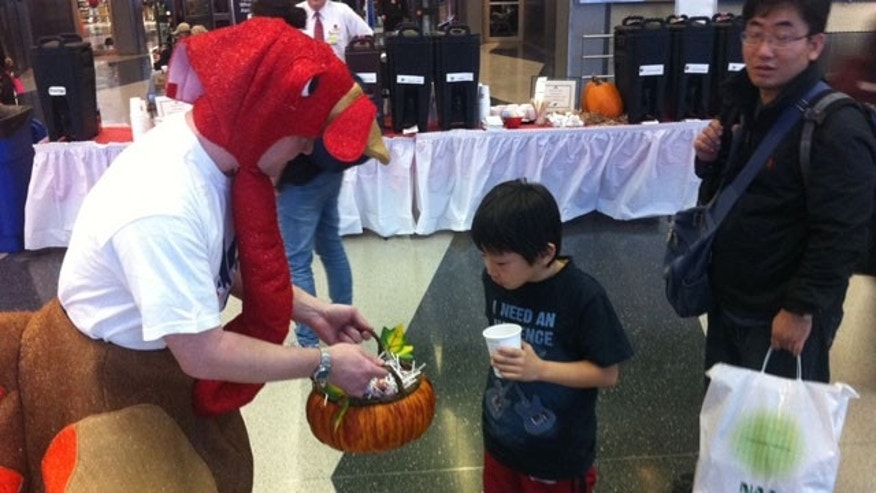 A turkey hands out candy to travelers at Chicago O'Hare's airport.