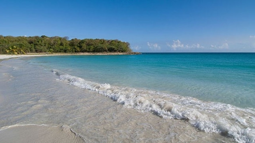 A view from Vieques Island's Mosquito Bay , one of Puerto Rico's best beaches.